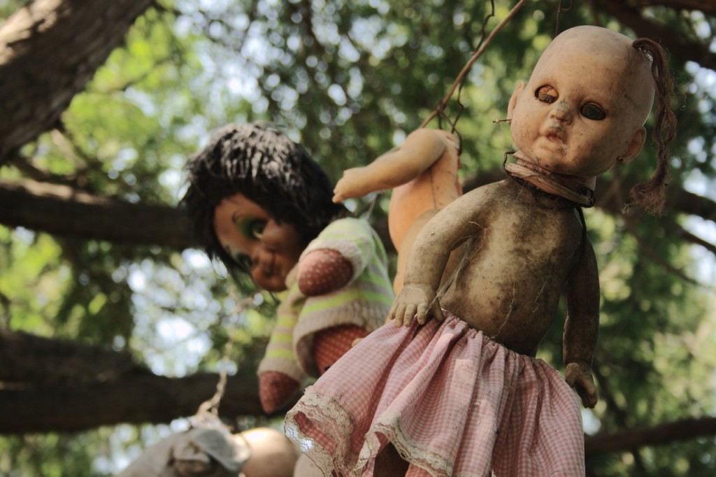 Несколько страшных кукол висят на деревьях. Остров покинутых кукол в Мексике.